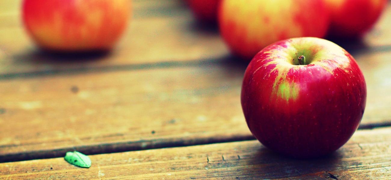 Veliki izbor sadnice jabuka!